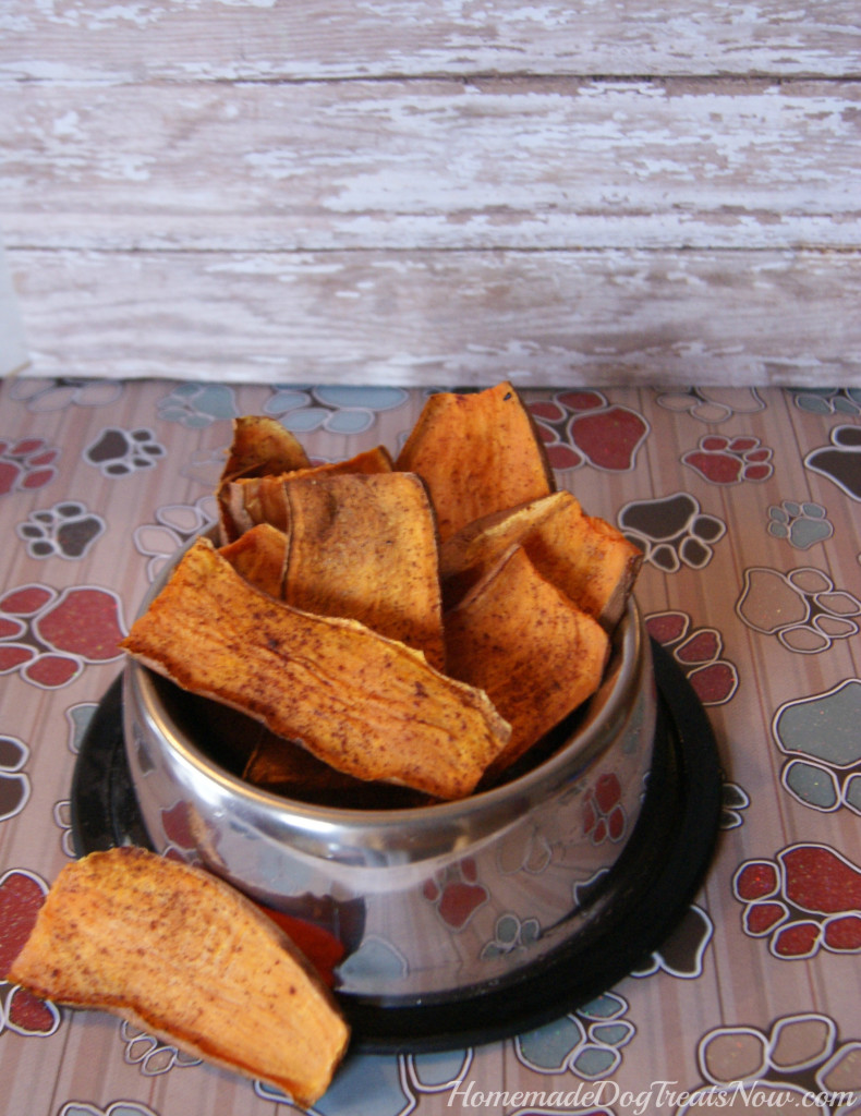 Easy Dog Treat Recipes