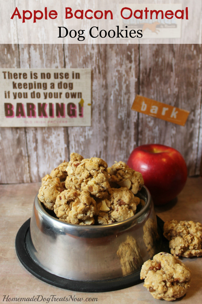 Apple Bacon Oatmeal Dog Cookies