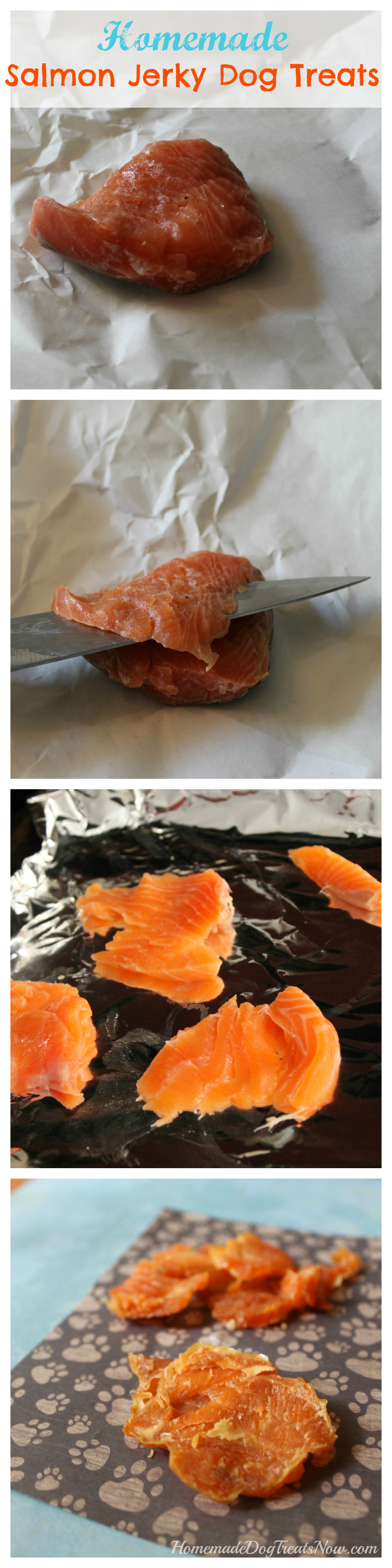 Easy Salmon Jerky Dog Treats