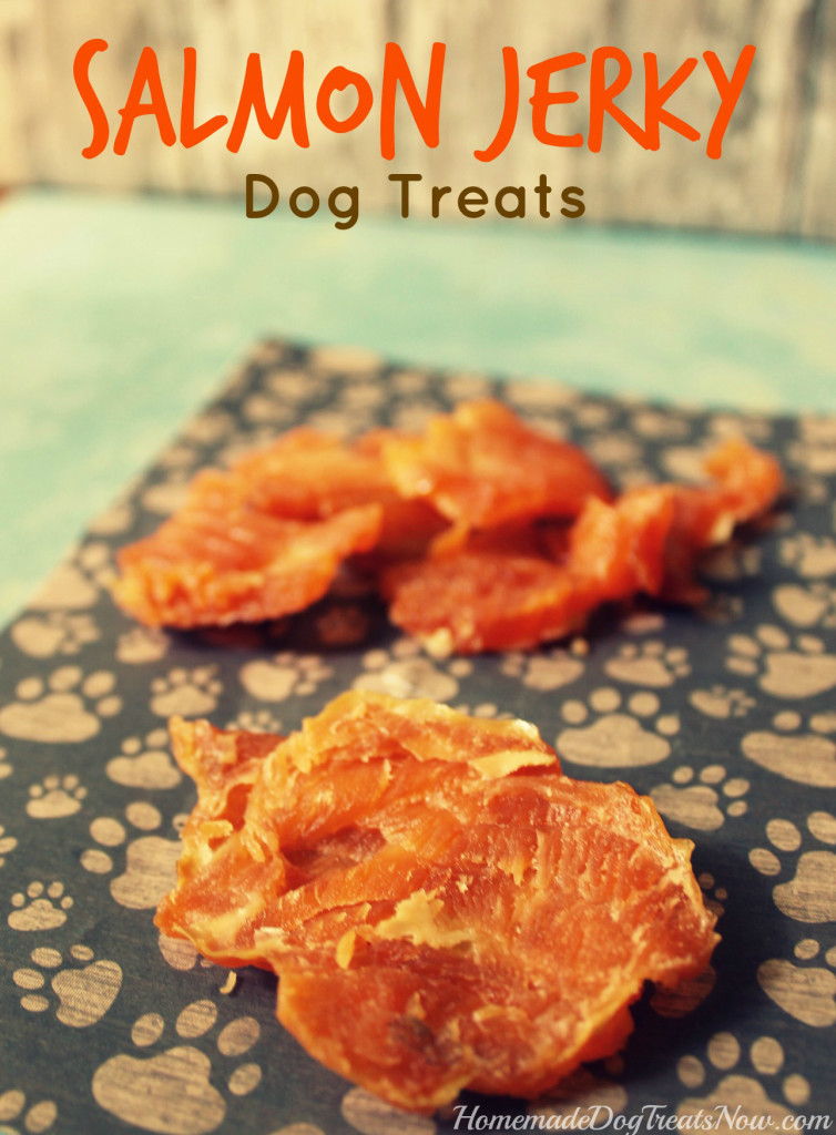 Salmon Jerky Dog Treats