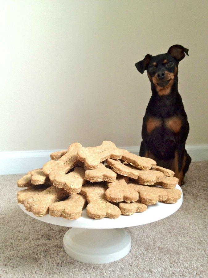 Salmon And Oatmeal Dog Treats